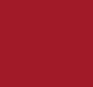 logo-web-1x